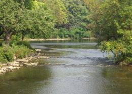 St Joe River, ID - Cutthroat Fishing